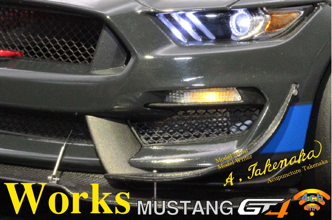 1/24 FORD MUSTANG GT4 Acupuncture Takenaka / Works CD