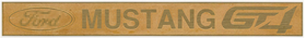 1/24 FORD MUSTANG GT4 Name plate